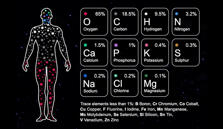 stardust-infographic-two-column.jpg.thumb.768.768