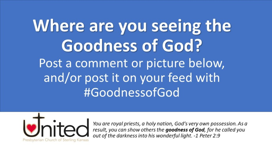 Where are you seeing the goodness of God
